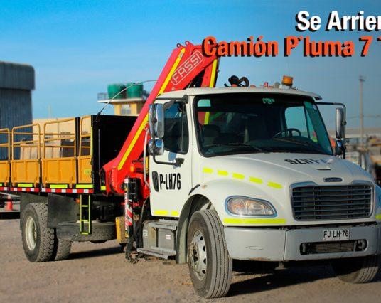Arriendo Camión Pluma 7 Ton